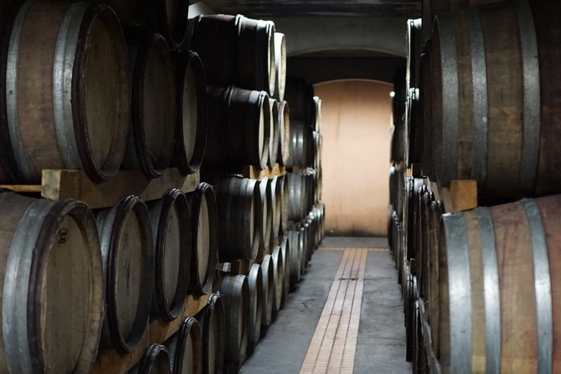 many wine barrels being stored