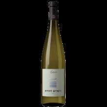 2015 Andriano Pinot Grigio Alto Adige