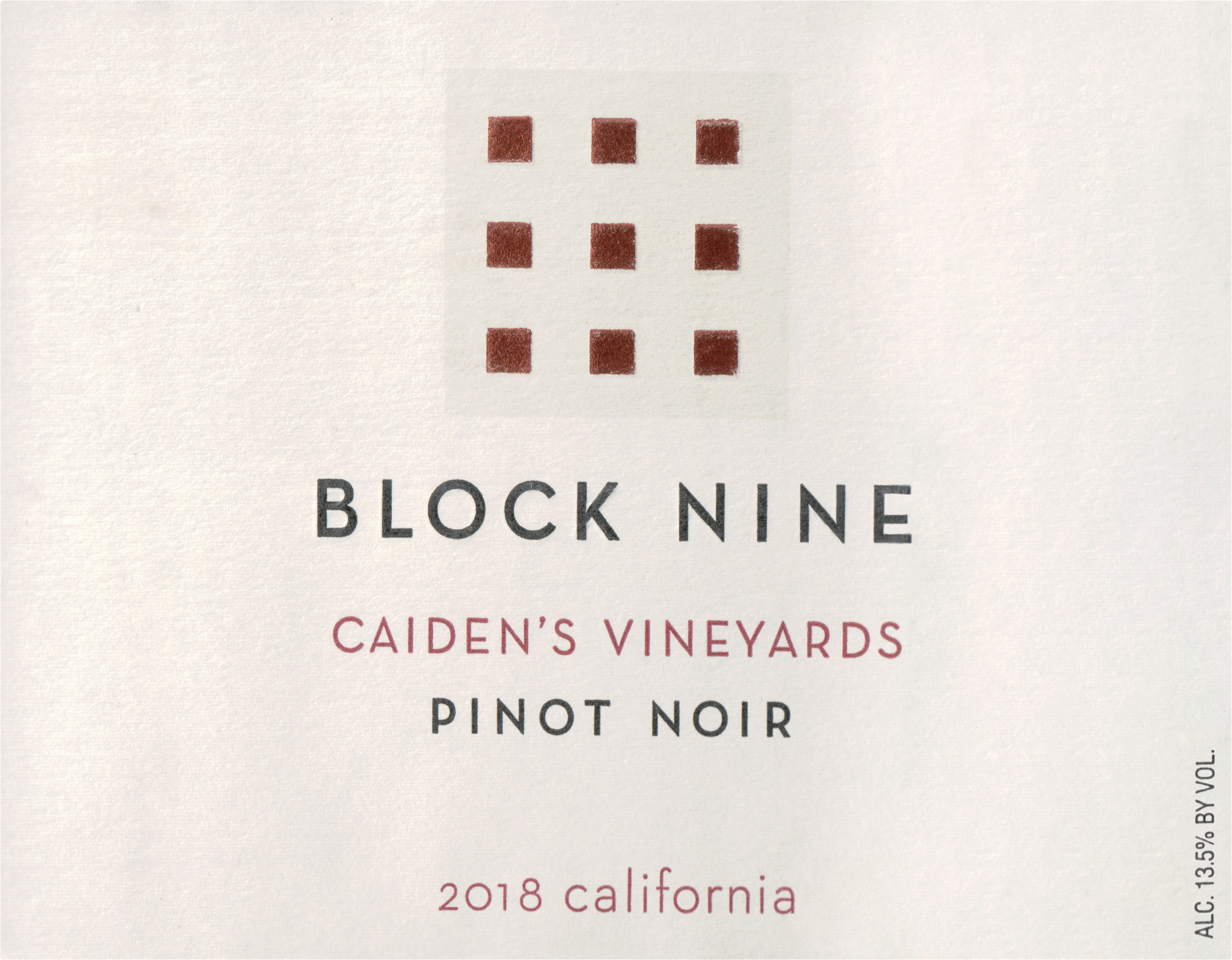 Block Nine Caiden