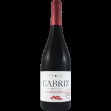 2016 Quinta De Cabriz Dao