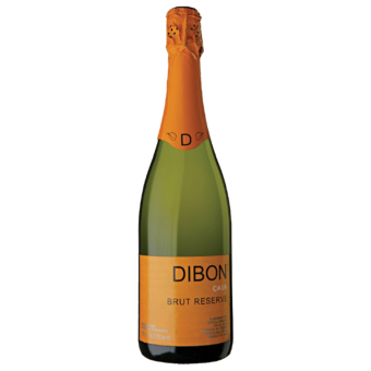 Bottle shot for  Dibon Brut Cava