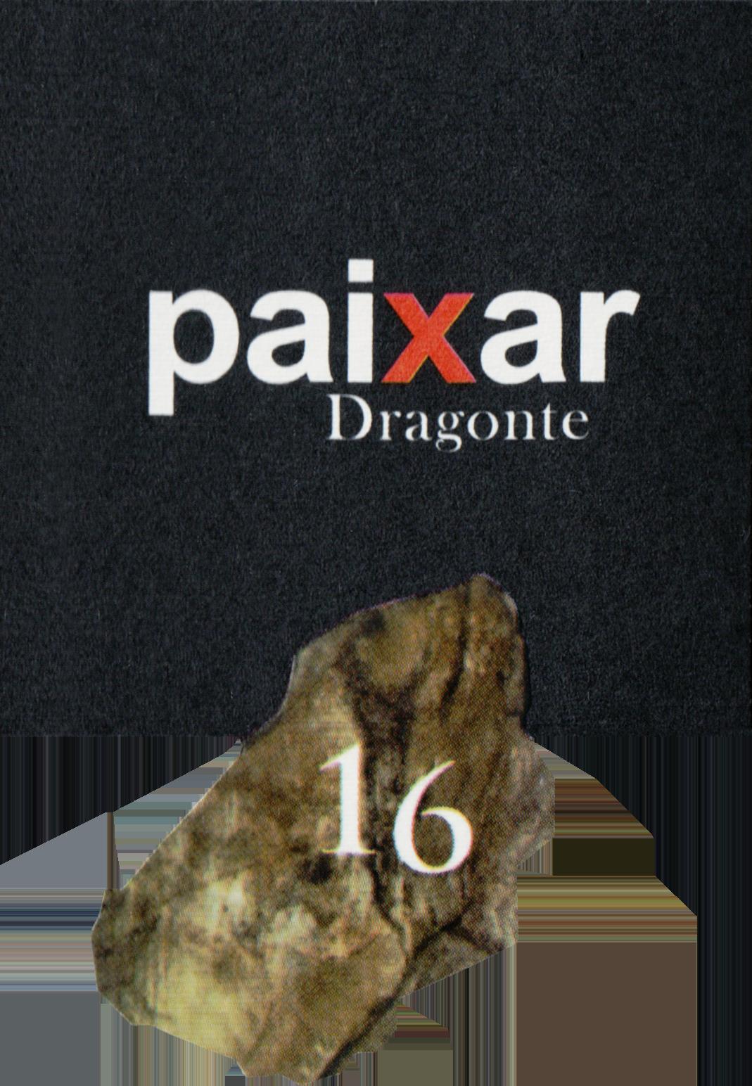 Vinedos Paixar 2016
