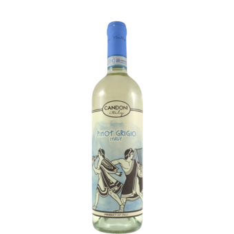 Bottle shot for 2019 Candoni Pinot Grigio