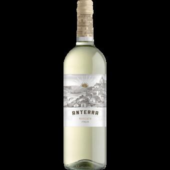 Bottle shot for  Anterra Moscato
