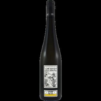 Bottle shot for 2020 Bernhard Ott Am Berg Gruner Veltliner
