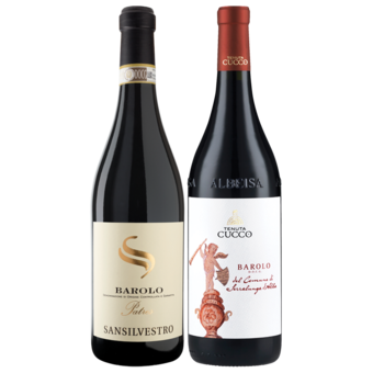 Bottle shot for  2016 Barolo 2 Pack