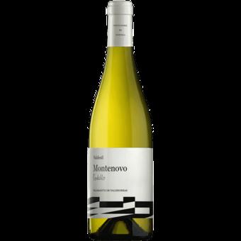 Bottle shot for 2020 Valdesil Montenovo Godello