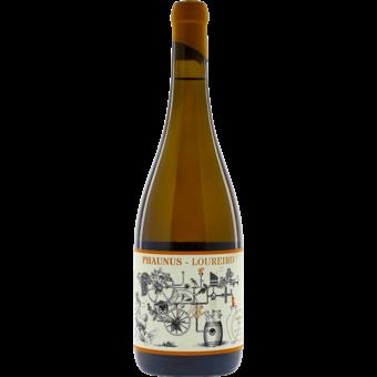 Bottle shot for 2020 Aphros 'phaunus' Loureiro Amphora Skin Contact (Orange Wine)
