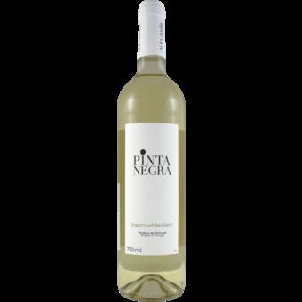 Bottle shot for 2020 Adega Mae Pinta Negra Branco