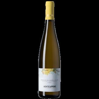 Bottle shot for 2020 Montecappone Verdicchio Dei Castelli Di Jesi Classico