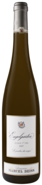 Old wine library bottle